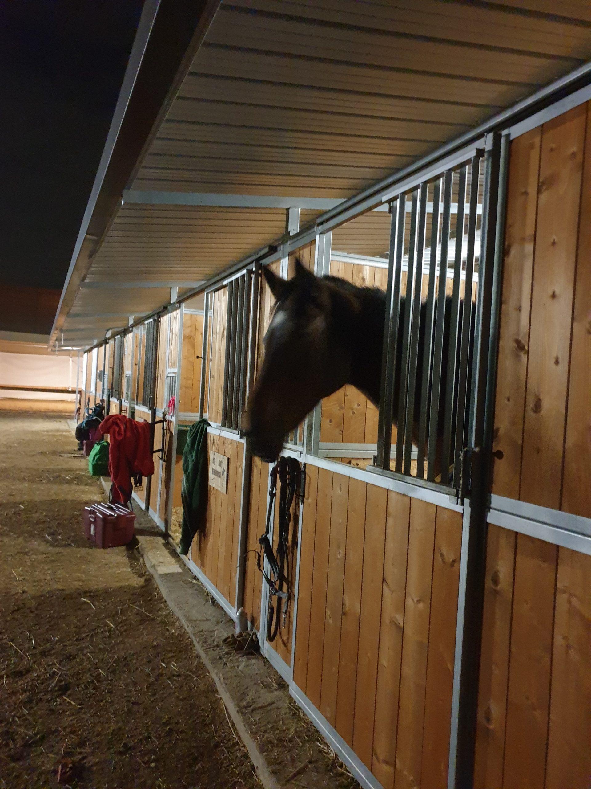 le scuderie e i box per ospitare il cavallo