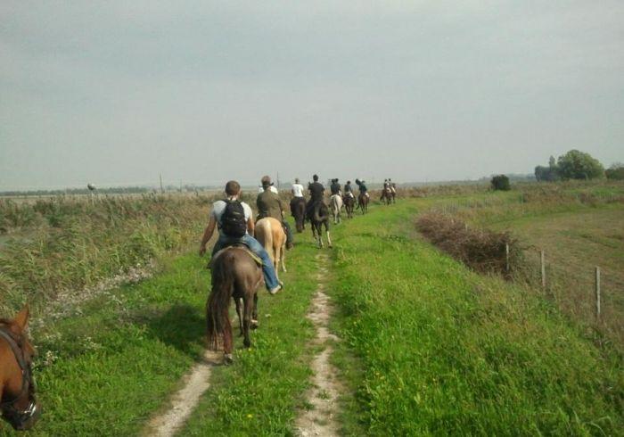 passeggiate a cavallo 2